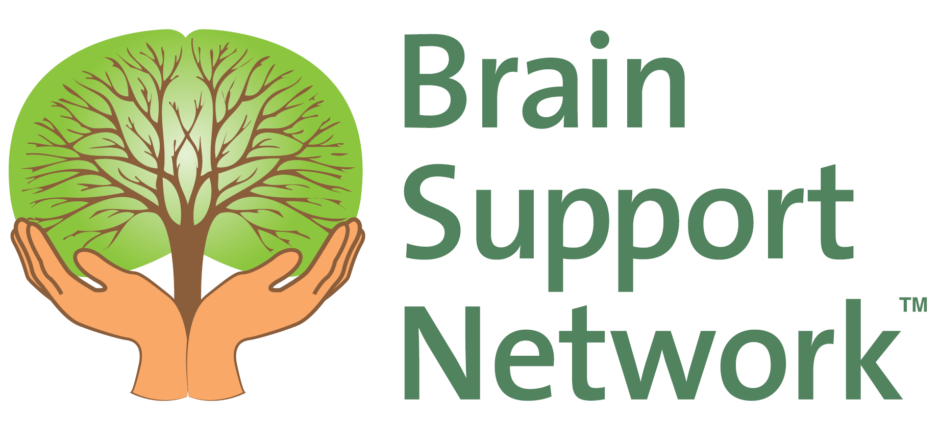 brain support network brain support network logos
